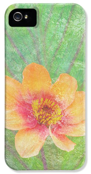 Peach iPhone 5s Case - Perfect Peach by JQ Licensing