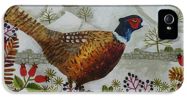 Pheasant And Snowy Hillside IPhone 5s Case