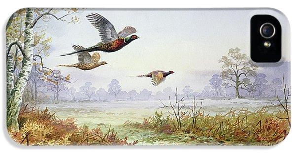 Pheasants In Flight  IPhone 5s Case