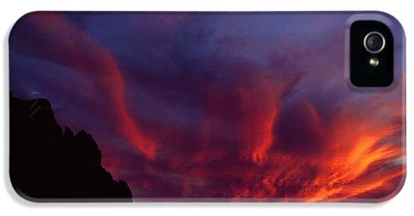 Phoenix Risen IPhone 5s Case