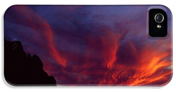 Phoenix Risen IPhone 5s Case by Randy Oberg