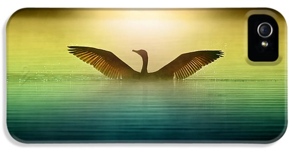 Goose iPhone 5s Case - Phoenix Rising by Rob Blair