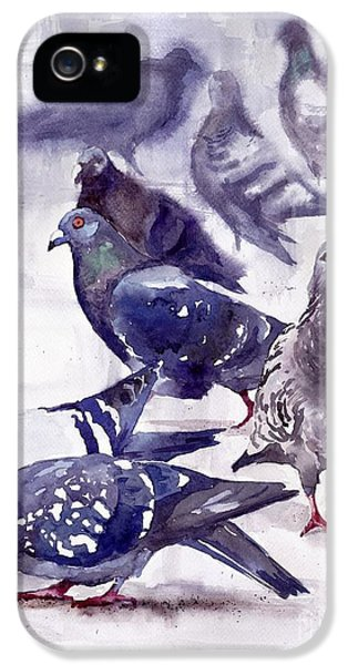 Pigeon iPhone 5s Case - Pigeons Watercolor by Suzann's Art