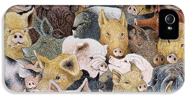 Pigs Galore IPhone 5s Case