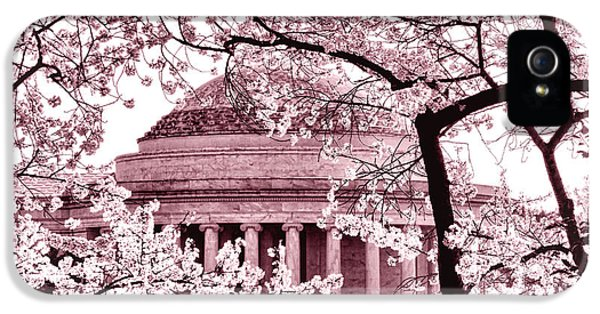Pink Cherry Trees At The Jefferson Memorial IPhone 5s Case