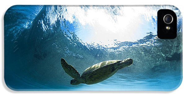 Pipe Turtle Glide IPhone 5s Case by Sean Davey