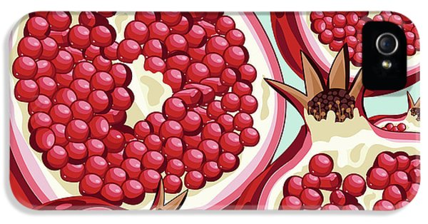 Pomegranate   IPhone 5s Case by Mark Ashkenazi