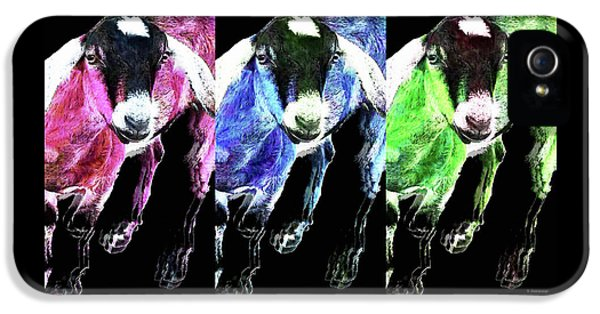 Pop Art Goats Trio - Sharon Cummings IPhone 5s Case by Sharon Cummings