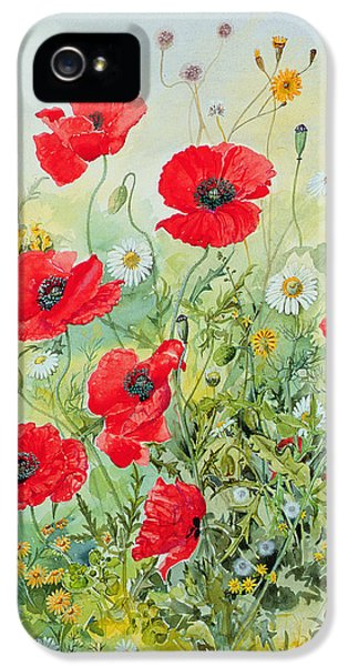 Garden iPhone 5s Case - Poppies And Mayweed by John Gubbins