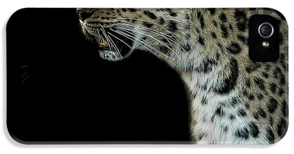 Leopard iPhone 5s Case - Prowl by Paul Neville