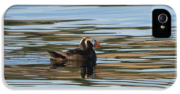 Puffin Reflected IPhone 5s Case by Mike Dawson