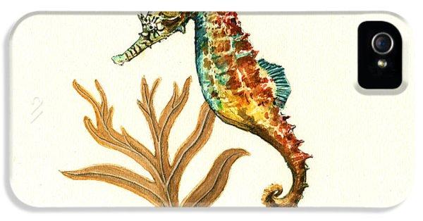 Rainbow Seahorse IPhone 5s Case by Juan Bosco