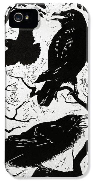 Ravens IPhone 5s Case