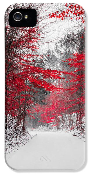 Red Blossoms  IPhone 5s Case