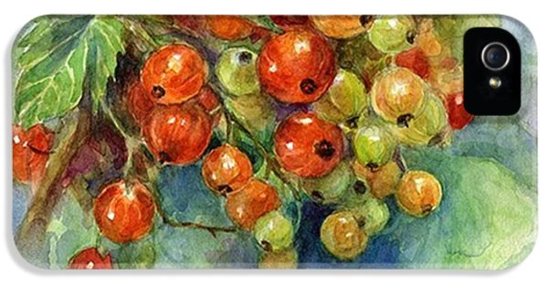 iPhone 5s Case - Red Currants Berries Watercolor by Svetlana Novikova