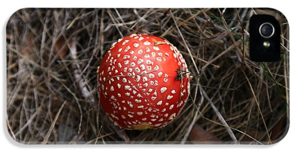 Red Spotty Toadstool IPhone 5s Case by Nareeta Martin