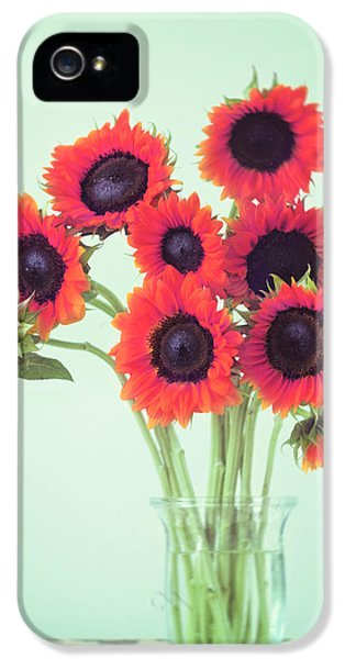 Sunflower iPhone 5s Case - Red Sunflowers by Amy Tyler