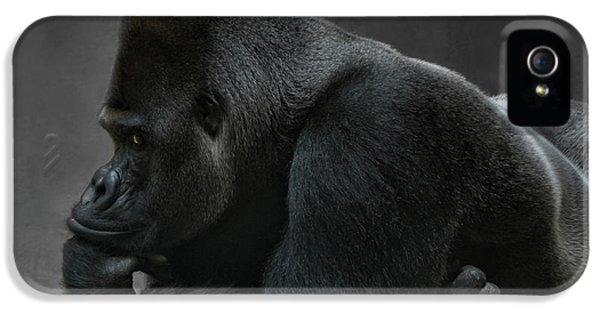 Gorilla iPhone 5s Case - Relaxed Silverback by Joachim G Pinkawa