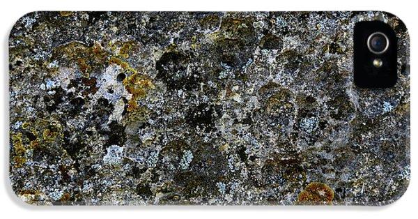 Rock Lichen Surface IPhone 5s Case by Nareeta Martin