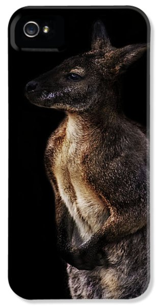 Emu iPhone 5s Case - Roo by Martin Newman