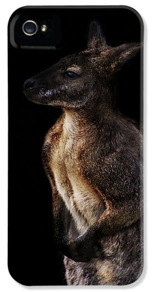 Roo IPhone 5s Case by Martin Newman