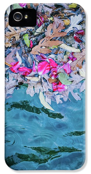 University Of Minnesota iPhone 5s Case - Rose Garden Fountain II by Betsy Armour