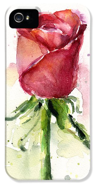Rose Watercolor IPhone 5s Case