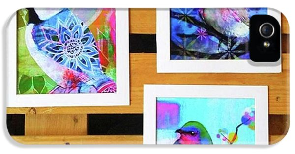 iPhone 5s Case - *sale* 3 11 X 14 In. Bird Prints With by Robin Mead
