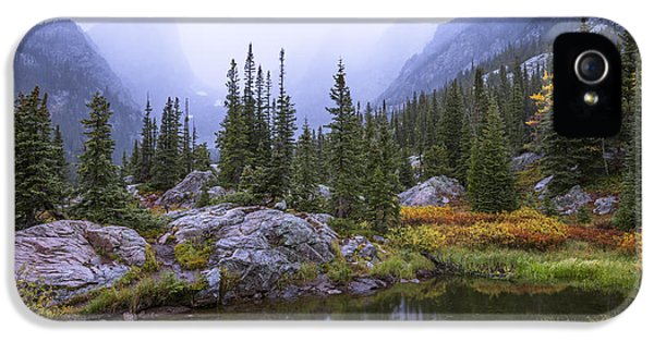 Mountain iPhone 5s Case - Saturated Forest by Chad Dutson