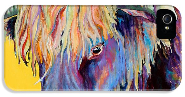 Cow iPhone 5s Case - Scotty by Pat Saunders-White