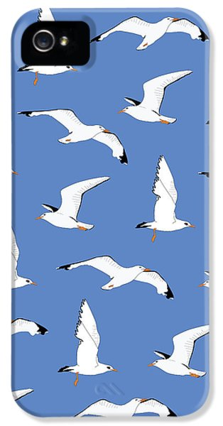 Seagulls Gathering At The Cricket IPhone 5s Case