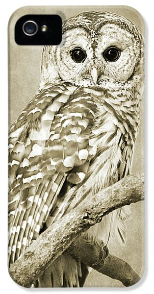 Sepia Owl IPhone 5s Case