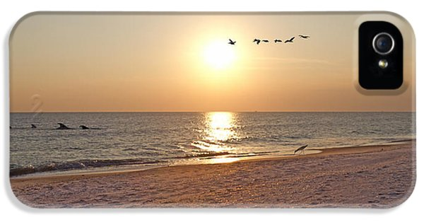 Shackleford Banks Sunset IPhone 5s Case by Betsy Knapp