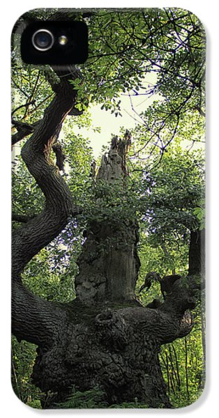 Dungeon iPhone 5s Case - Sherwood Forest by Martin Newman