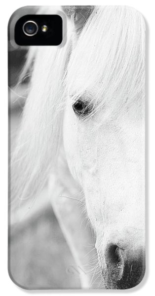 Shetland Pony IPhone 5s Case by Tina Lee