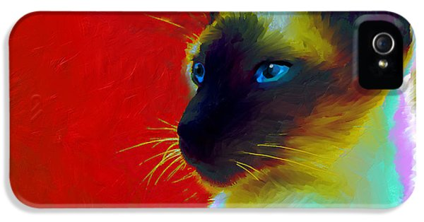 Siamese Cat 10 Painting IPhone 5s Case by Svetlana Novikova