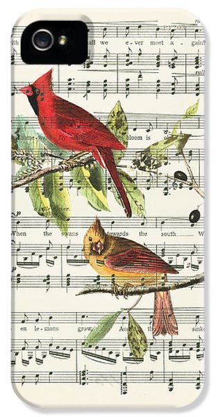 Swallow iPhone 5s Case - Singing Cardinals by Delphimages Photo Creations