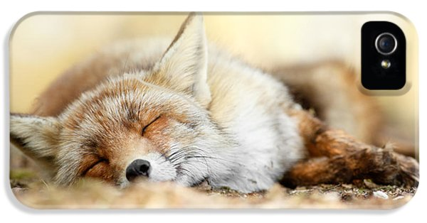 Sleeping Beauty -red Fox In Rest IPhone 5s Case by Roeselien Raimond