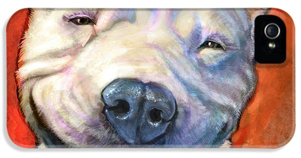 Bull iPhone 5s Case - Smile by Sean ODaniels