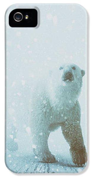Polar Bear iPhone 5s Case - Snow Patrol by Katherine Smit