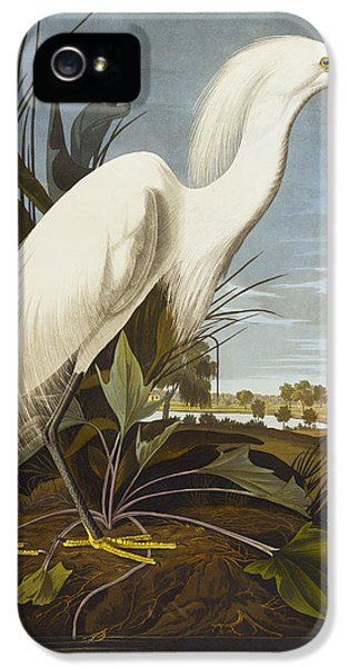 Heron iPhone 5s Case - Snowy Heron by John James Audubon