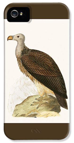 Sociable Vulture IPhone 5s Case