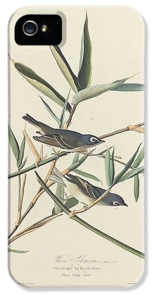 Flycatcher iPhone 5s Case - Solitary Flycatcher by Dreyer Wildlife Print Collections