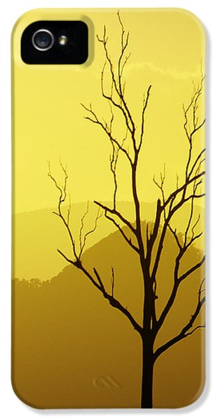 iPhone 5s Case - Solitude by Holly Kempe