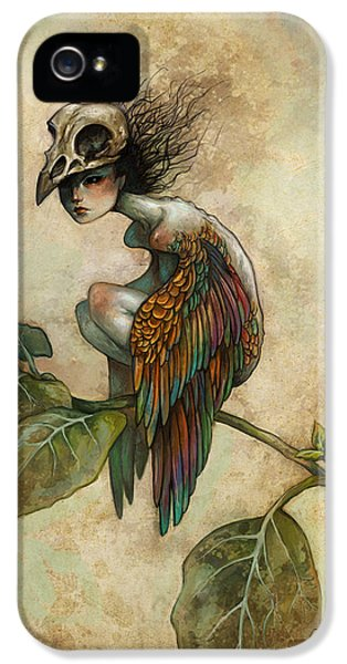 Animals iPhone 5s Case - Soul Of A Bird by Caroline Jamhour