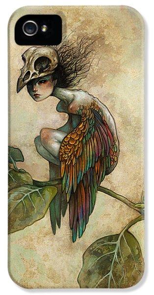 iPhone 5s Case - Soul Of A Bird by Caroline Jamhour