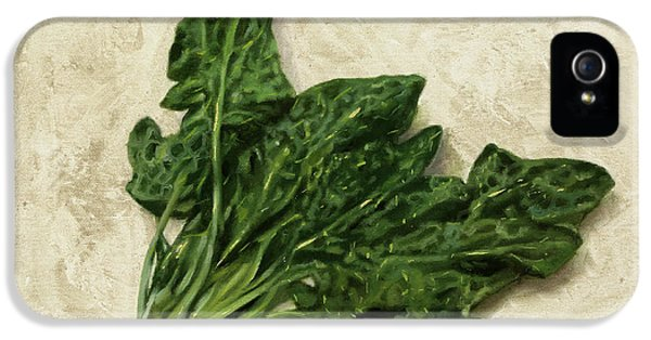 Spinach iPhone 5s Case - Spinaci by Guido Borelli