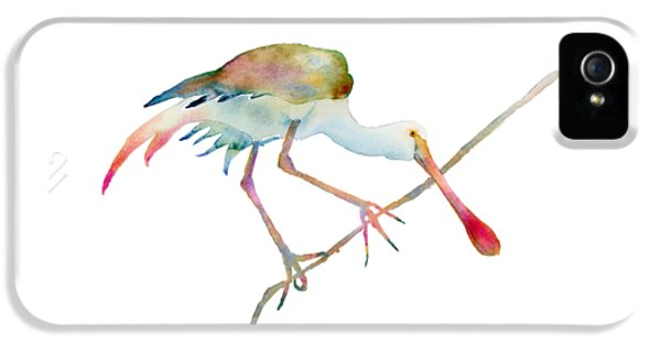 Spoonbill  IPhone 5s Case by Amy Kirkpatrick