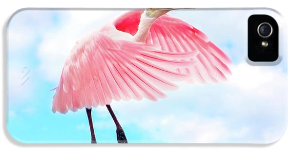 Spoonbill Launch IPhone 5s Case