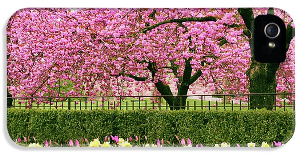 IPhone 5s Case featuring the photograph Spring Extravaganza by Jessica Jenney